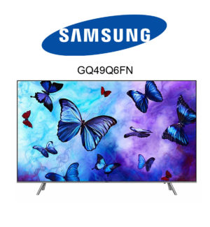 Samsung GQ49Q6FN QLED 4K Fernseher